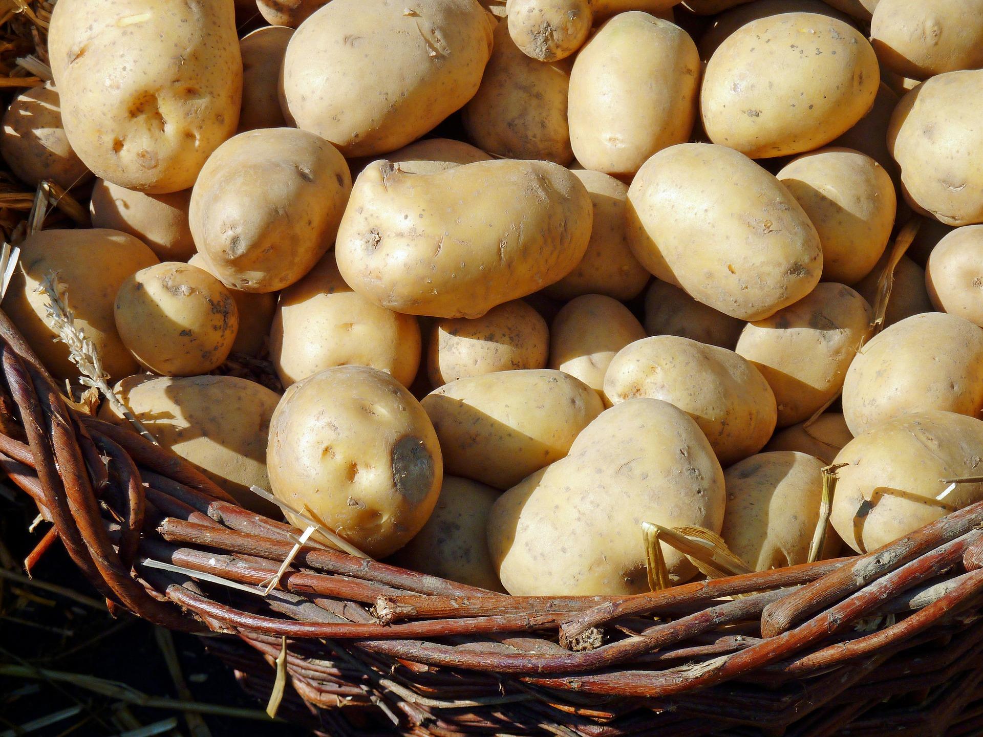 4. Kartoffelfest