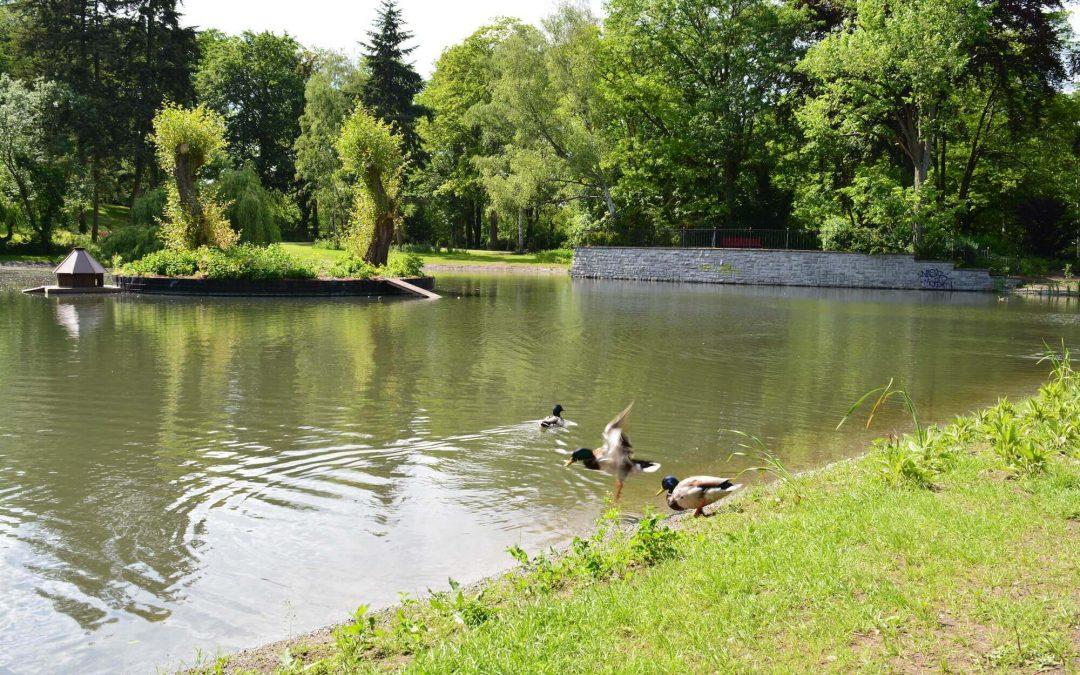 Nachbarschafts- und Familienfest im Gemeindepark Lankwitz